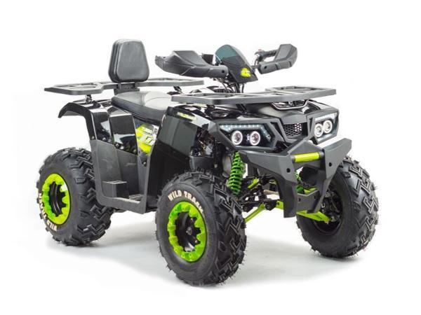 Квадроцикл Motoland Wild Trak 200